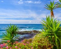 Fun Facts About Tenerife that May Surprise You